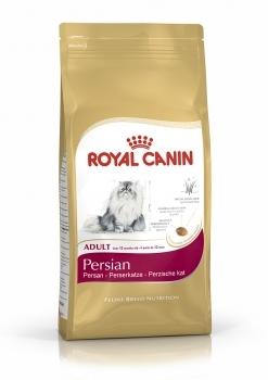 PERSIAN 30 ADULT
