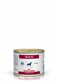 HEPATIC CANINE