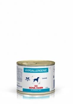 HYPOALLERGENIC CANINE