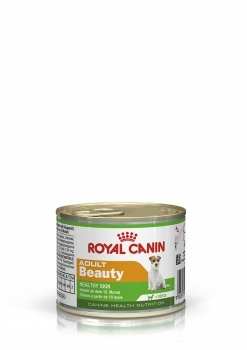 MINI ADULT BEAUTY CANINE