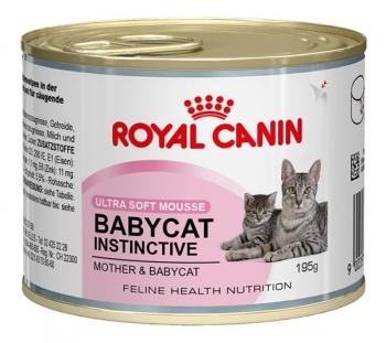 BABYCAT INSTINCTIVE (LATA)