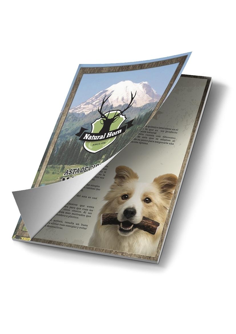PDF Natural Horn