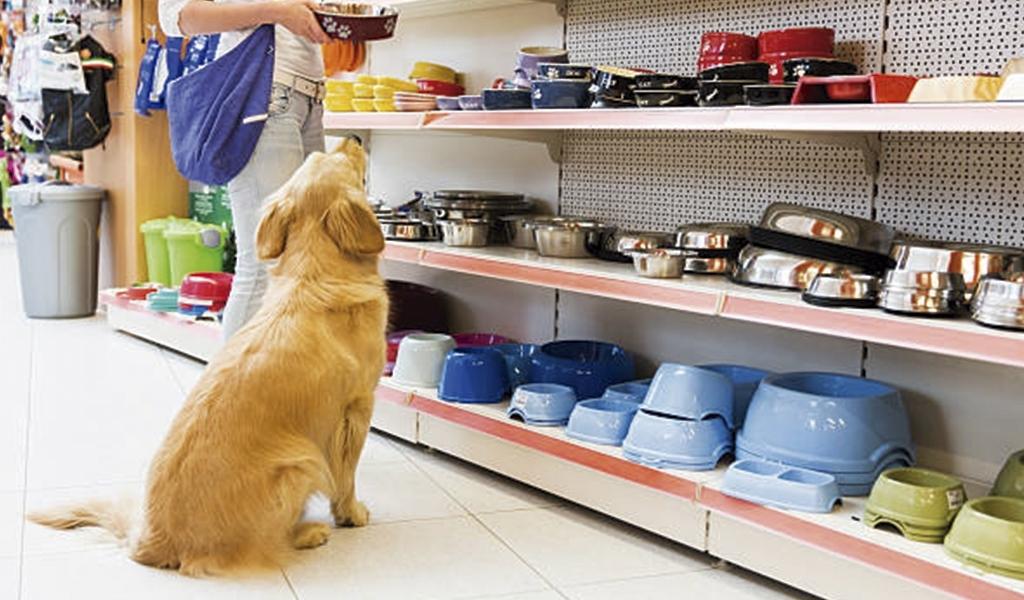 Comederos y bebederos perro