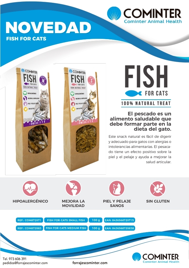 Novedad Fish For Cats