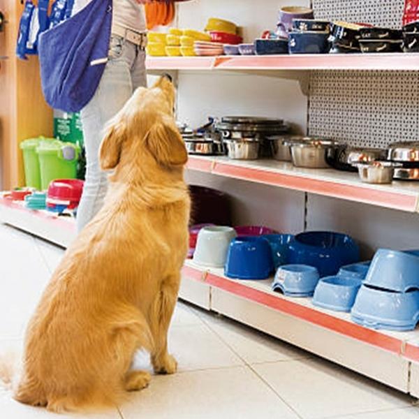 tienda complementos mascotas