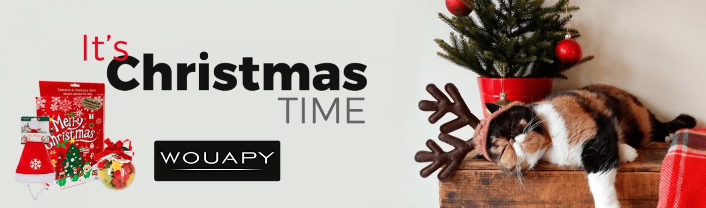 wouapy christmas page