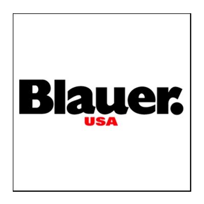 banner marca blauer