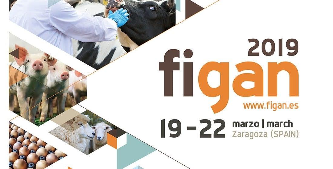 FIGAN 2019 - Zaragoza
