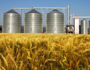 Sensor de silos, el producto que necesita tu empresa