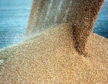 Sensores de nivel para silos de granos
