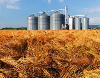 Sensors de nivell per sitges de farina