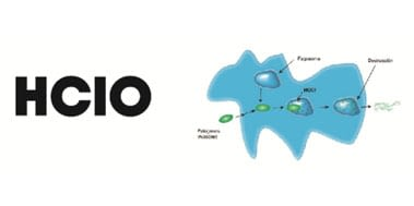 HCIO (Ácido Hipocloroso)