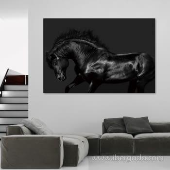 Fotografía Caballo Negro (150x100)