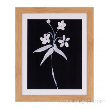 Cuadro LILY Marco Roble (25X30)