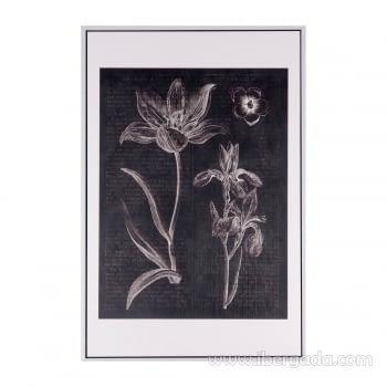 Cuadro FLOWERS Marco Blanco (40X60)