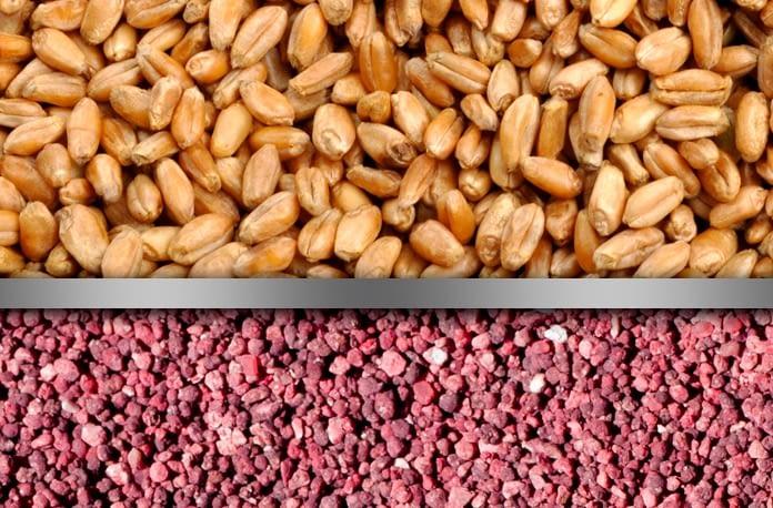 Versión COMBINADA - Abono granulado normal y microgranulado