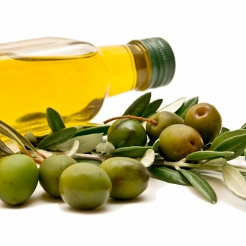 OLIVES THAT MAKE OLIVE OIL