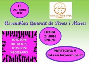 l'AMPA vam celebrar l'assemblea general 2020 online.