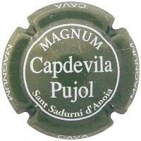 CAPDEVILA PUJOL V. 4252 X. 03750 MAGNUM (GRIS)