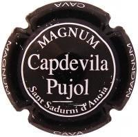 CAPDEVILA PUJOL V. 5677 X. 20226 MAGNUM NEGRE