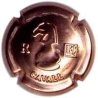 NANCI CAROL V. 13582 X. 36548 (CAVALL R)