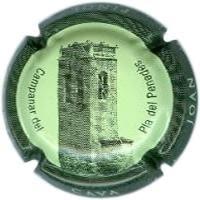 JOAN PIÑOL TORRENTS V. 14590 X. 46303