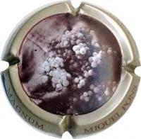MIQUEL PONS V. 7863 X. 17716 MAGNUM
