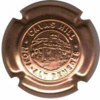 CAVAS HILL V. 13535 X. 80288