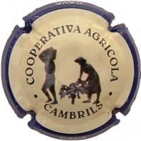 COOP. AGRICOLA CAMBRILS V. 6183 X. 13957