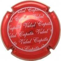 CAPITA VIDAL V. 19001 X. 66874