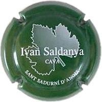 IVAN SALDANYA V. 4429 X. 05119