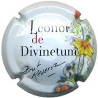 DIVINETUM V. 21399 X. 74671