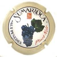 SUMARROCA V. 0887 X. 02780 (PINOT NOIR)