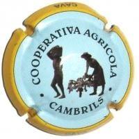 COOP. AGRICOLA CAMBRILS V. 10720 X. 34603