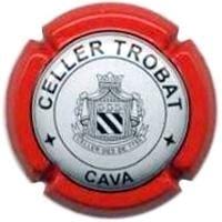 CELLER TROBAT V. 6175 X. 21549 (FALDO VERMELL)