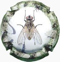 CAL LLUSIA V. 17728 X. 58676