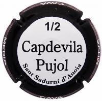 CAPDEVILA PUJOL V. 24910 X. 64369 (1/2 BOTELLA)