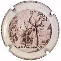JOAN PIÑOL TORRENTS V. 23846 X. 87279