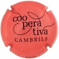 COOP. AGRICOLA CAMBRILS V. 21312 X. 74421