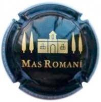 MAS ROMANI V. 22855 X. 66398