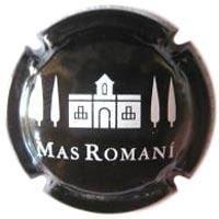 MAS ROMANI V. 22856 X. 69589