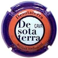 DESOTATERRA V. 24607 X. 55329