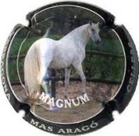 CELLERS CAMP DE TARRAGONA V. 17118 X. 62530 MAGNUM