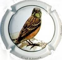 CAL LLUSIA V. 18346 X. 63301 (HORTOLÀ)