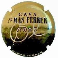 EL MAS FERRER X. 106769 (2009)