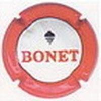 BONET V. 1991 X. 04878