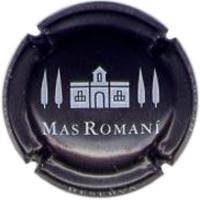 MAS ROMANI V. 8670 X. 31874