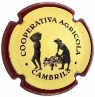 COOP. AGRICOLA CAMBRILS V. 8604 X. 33272