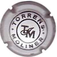 TORRENS MOLINER V. 0697B X. 12873 DIBUIX GRUIXUT