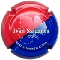 IVAN SALDANYA V. 15142 X. 47497
